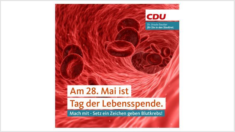 Das Bild zeigt das Innere einer Ader, in der Blutplättchen schwimmen.